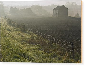 Morning Mist Over Field And Wood Print by Jim Craigmyle