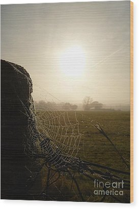 Wood Print featuring the photograph Morning Mist by Vicki Spindler