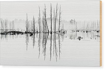 Morning Mystery Wood Print by Louis Dallara