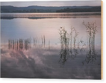 Morning Nocturne. Ladoga Lake. Northern Russia  Wood Print by Jenny Rainbow