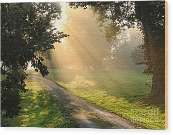 Morning On Country Road Wood Print by Olivier Le Queinec