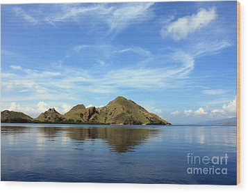 Wood Print featuring the photograph Morning On Komodo by Sergey Lukashin