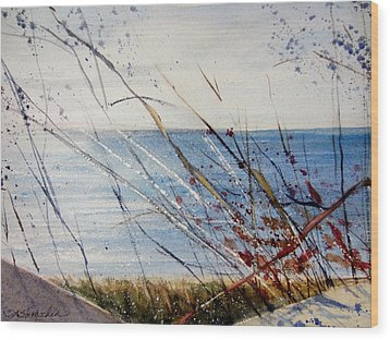 Morning On Lake Michigan Wood Print