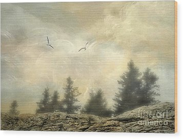 Morning On The Coast Wood Print by Darren Fisher