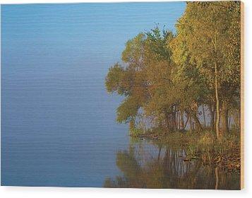 Morning On The Saganashkee Wood Print by Larry Bohlin