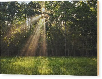 Morning Radiance Wood Print by Andrew Soundarajan