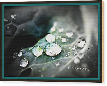Wood Print featuring the photograph Morning Rain by Michaela Preston