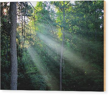 Wood Print featuring the photograph Morning Rays by Greg Simmons