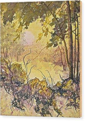 Morning Serenity Wood Print by Carolyn Rosenberger