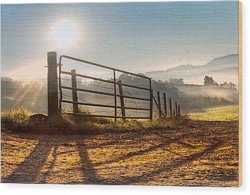 Morning Shadows Wood Print by Debra and Dave Vanderlaan