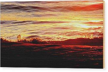 Morning Splash Wood Print by Karen Wiles