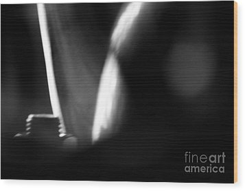 Wood Print featuring the photograph Morning by Steven Macanka