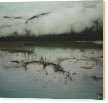 Morning Stillness Wood Print by Gun Legler