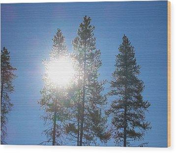 Morning Sun Wood Print by Jewel Hengen