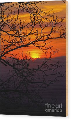 Morning Sunrise Wood Print