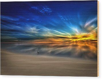 Morning Sunrise With A Seagull Wood Print by Gary Smith