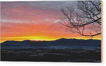 Wood Print featuring the photograph Morning Tangerine Glow by Lara Ellis