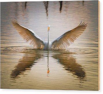 Morning Wings An Egret Awakes Wood Print