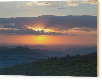 Wood Print featuring the photograph Mornings Like This by Melanie Moraga