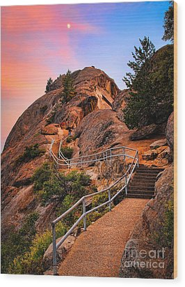 Moro Rock Path Wood Print by Inge Johnsson