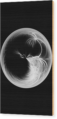 Morphed Art Globe 13 Wood Print by Rhonda Barrett