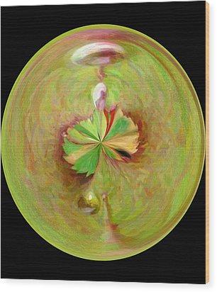 Morphed Art Globe 21 Wood Print by Rhonda Barrett