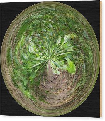 Morphed Art Globe 3 Wood Print by Rhonda Barrett