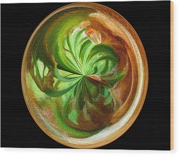 Morphed Art Globes 16 Wood Print by Rhonda Barrett