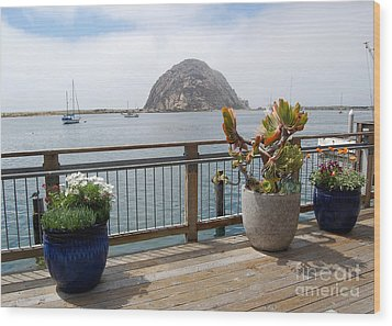 Wood Print featuring the photograph Morro Bay And Plants by Debra Thompson