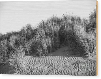 Wood Print featuring the photograph Morro Beach Shrubbery by Terry Garvin