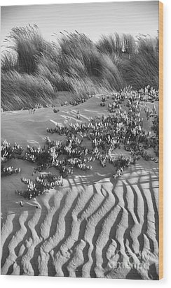 Morro Beach Textures Bw Wood Print by Terry Garvin