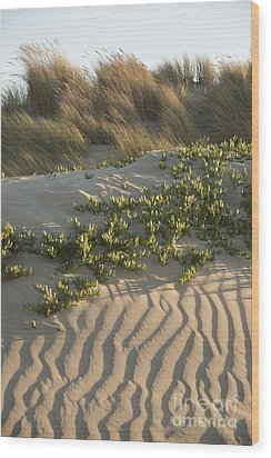 Wood Print featuring the photograph Morro Beach Textures by Terry Garvin