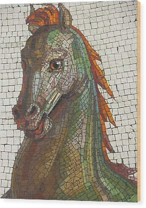 Wood Print featuring the photograph Mosaic Horse by Marcia Socolik