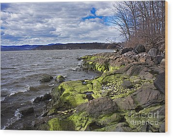 Wood Print featuring the photograph Moss Along The Hudson River by Rafael Quirindongo
