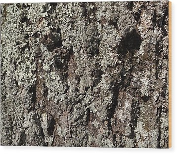 Wood Print featuring the photograph Moss And Lichens by Jason Williamson