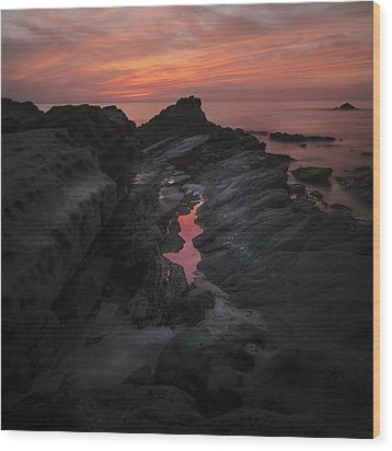 Wood Print featuring the photograph Moss Cove Treasures by Sean Foster