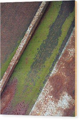 Moss Green-raw Steel Wood Print by Tom Druin