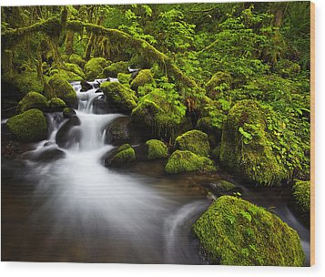 Mossy Arch Cascade Wood Print by Darren  White