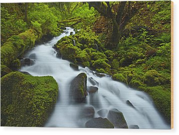Mossy Creek Cascade Wood Print by Darren  White