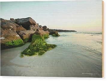 Mossy Lagoon Wood Print by Volker blu Firnkes