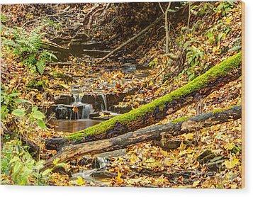 Mossy Log And Stream Wood Print