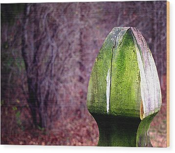 Wood Print featuring the photograph Mossy Post by Greg Simmons