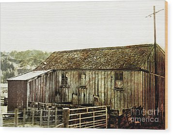 Mossy Shed Wood Print by Linde Townsend