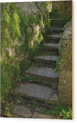 Mossy Steps Wood Print by Carla Parris