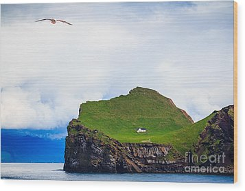 Most Peaceful House In The World Wood Print by Peta Thames