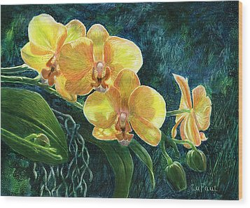 Wood Print featuring the drawing Moth Orchids by Sandra LaFaut