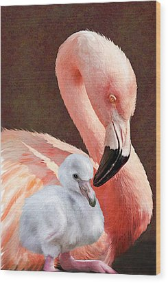 Mother And Baby Flamingo Wood Print by Jane Schnetlage