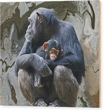 Mother And Child Chimpanzee 2 Wood Print