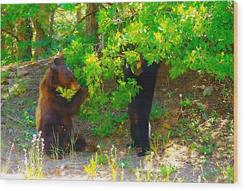 Mother Bear And Cub Wood Print by Jeff Swan