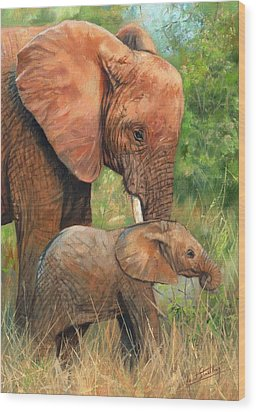 Mother Love 2 Wood Print by David Stribbling